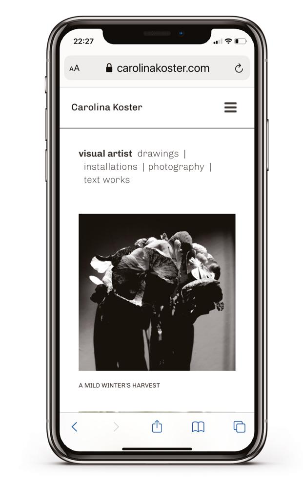 websites-en-meer – Carolina Koster